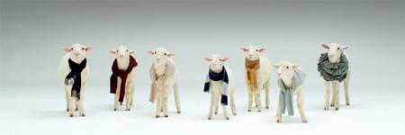 lambs450